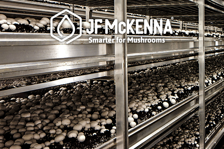 Mushroom Structures, Shelving & Equipment