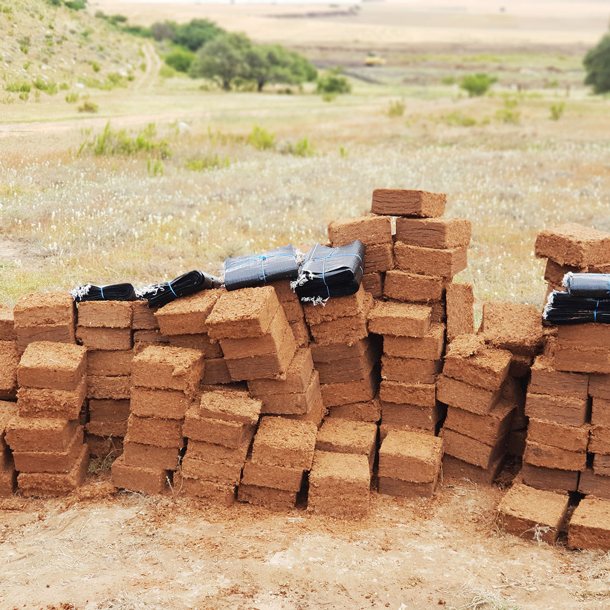 Premium Quality Coco Peat in South Africa